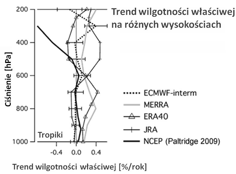 reanalizy pokazujące trend wilgotności właściwej
