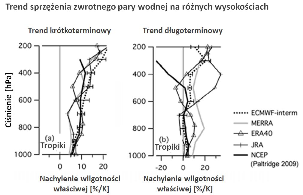 Trend sprzężenia zwrotnego pary wodnej na różnych wysokościach