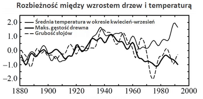 Rozbieżność między wzrostem drzew a temperaturą