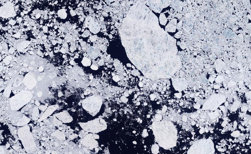 Zdjęcie przedstawia jasne kry/góry lodowe wyraźnie odcinające się od ciemnego tła oceanu.