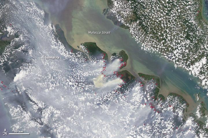 Płonące lasy na Sumatrze