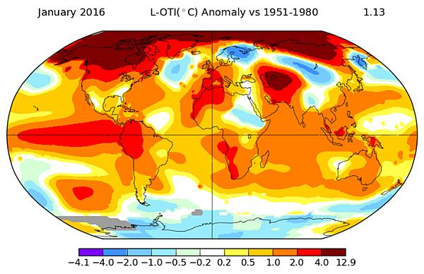Temperatura globalna w styczniu - mapa