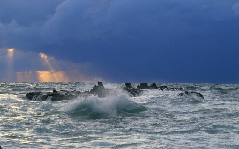 Okrutne morze