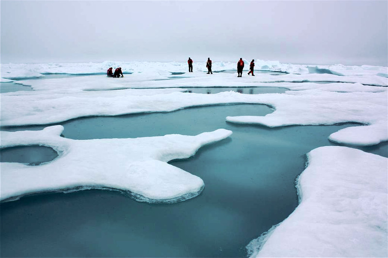 Arktyka 2010