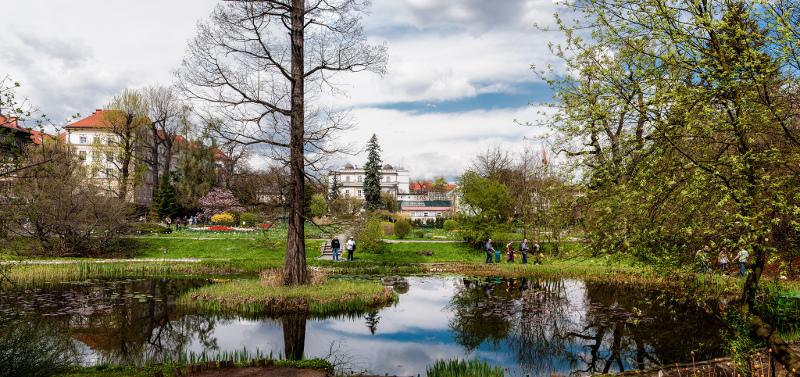 zdjęcie przedstawia ogród botaniczny, na pierwszym planie staw, w oddali historyczne budynki i spacerowicze