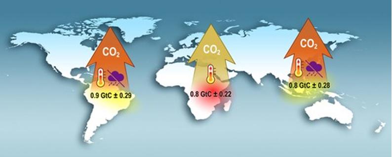 Trzy grube strzałki celujące w górę, z napisami CO2, w tle mapa świata