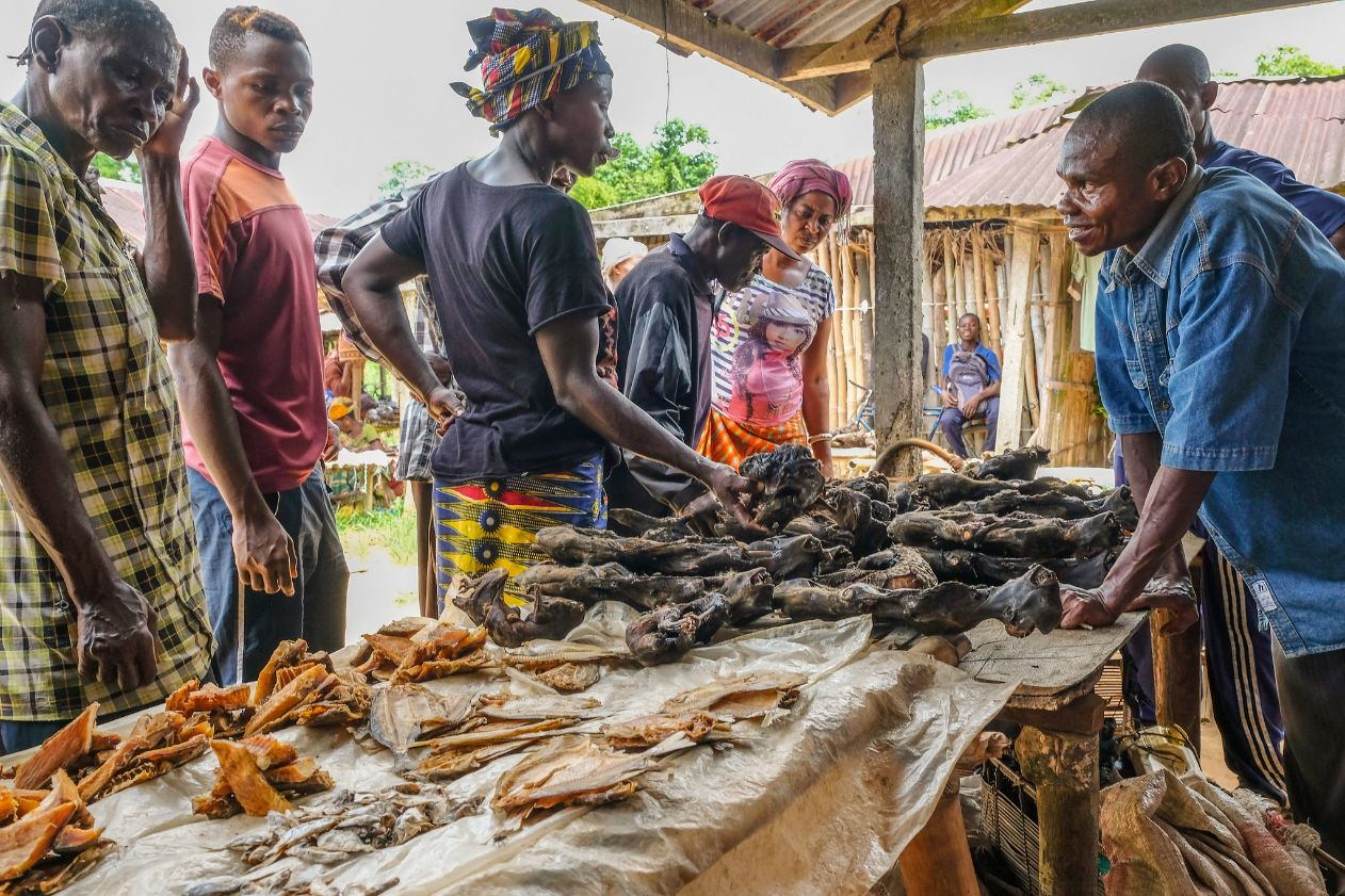 Targ z mięsem dzikich zwierząt w Demokratycznej Republice Konga.