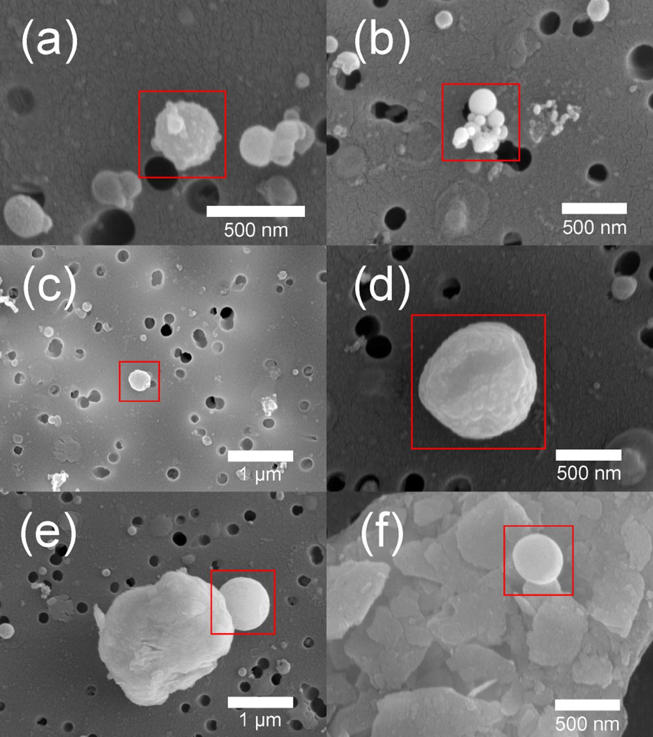 Zdjęcie mikroskopowe: cząsteczki organiczne zidentyfikowane w próbkach pyłu atmosferycznego w Azji.