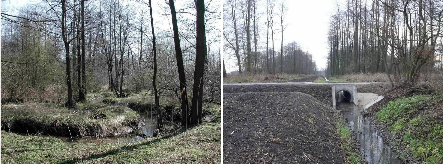Rzeczka Moszczanka przed regulacją (urozmaicone koryto, drzewa) i po niej (wyprostowane koryto, betonowy mostek.