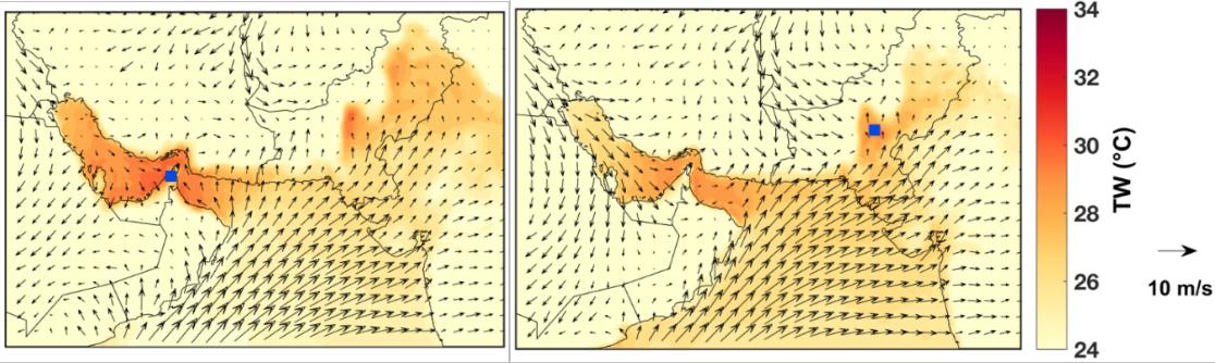 Mapy: przykładowe warunki meteorologiczne nad Morzem Arabskim i w jego otoczeniu. Widoczne wysokie temperatury i wiatr od strony morza.