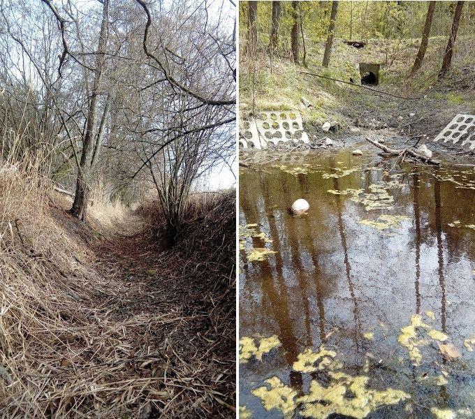 Susza w Polsce, wyschnięte rzeki i zbiorniki