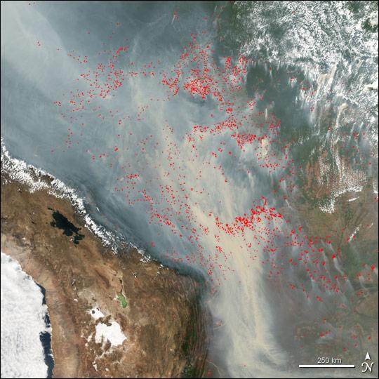 Pożary lasów w Ameryce Południowej.