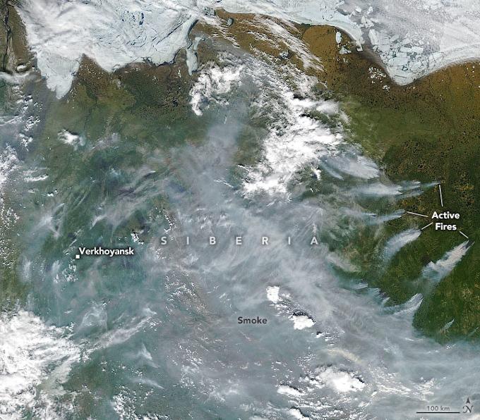 Zdjęcie satelitarne: pożary na Syberii. Nad brązowo-zielonym obszarem lądu widać potężne obłoki dymu. Z prawej strony także smugi dymu unoszące się z konkretnych pożarów