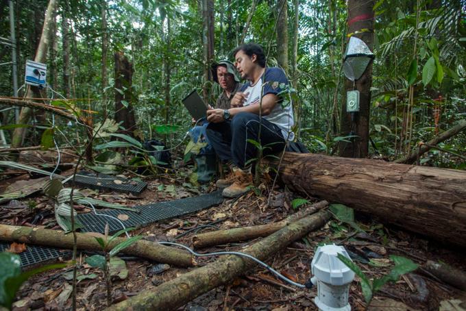 Zdjęcie: dwóch naukowców w turystycznych ubraniach siedzi na zwalonym drzewie w lesie, na kolanach mają komputer, wokół różne czujniki.
