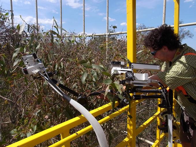 Zdjęcie: eksperyment FACE. Naukowiec steruje urządzeniem pomiarowym na wysięgniku, wokół widoczna roślinność i ażurowa konstrukcja wielkiej wieży pomiarowej.