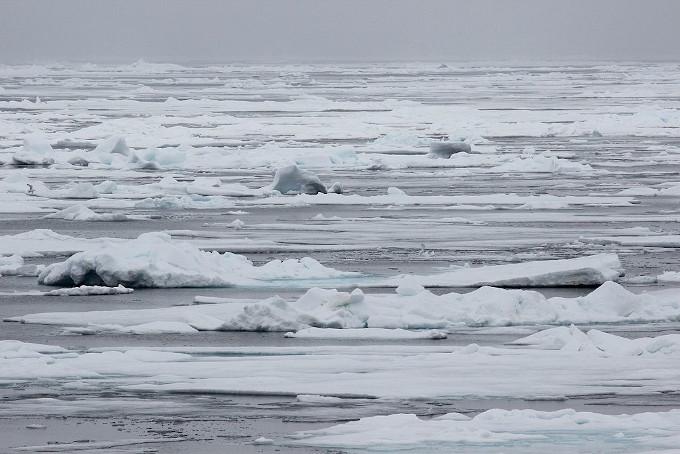 Zdjęcie: lód w Arktyce. Białe płaty lodu połamanego lodu przeplatają się z szarymi plamami wody, zachmurzone niebo.