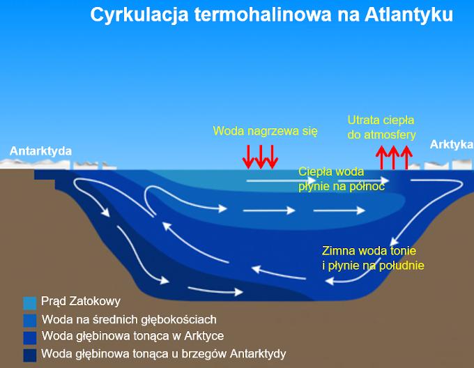 Schemat cyrkulacji termohalinowej w Oceanie Atlantyckim