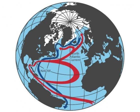 Schemat cyrkulacji oceanicznej na Atlantyku, kula ziemska z zaznaczonymi prądami morskimi.