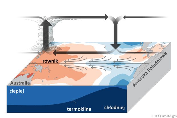 Schemat cyrkulacji nad Oceanem Spokojnym, faza La Niña.