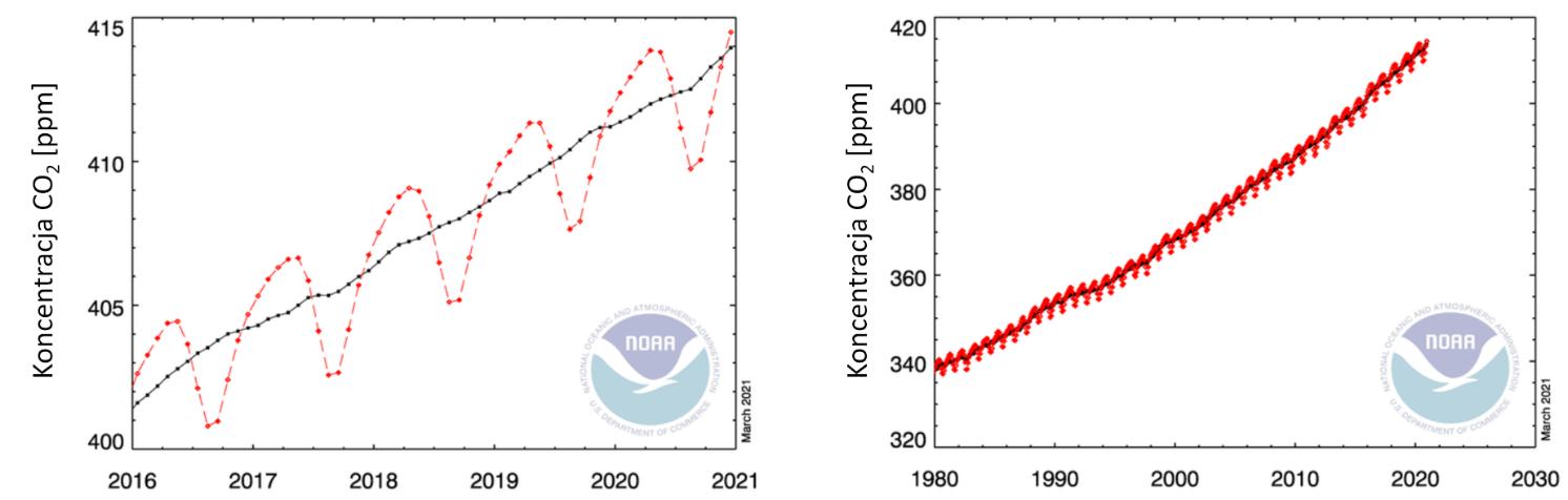 Wykresy: koncentracja dwutlenku węgla w ostatnich latach. Widoczny jest wzrost z roku na rok oraz wzrosty i spadki koncentracji w cyklu rocznym.