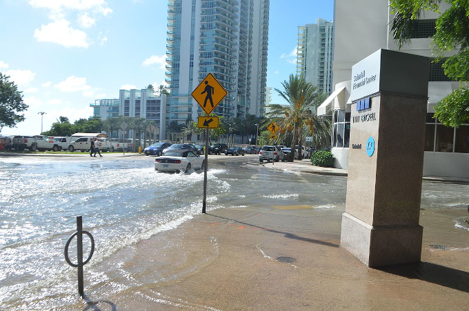 Zdjęcie: powódź w Miami, widać ulicę miasta z wysokimi budynkami, palmami i warstwą wody na jezdni i chodniku.