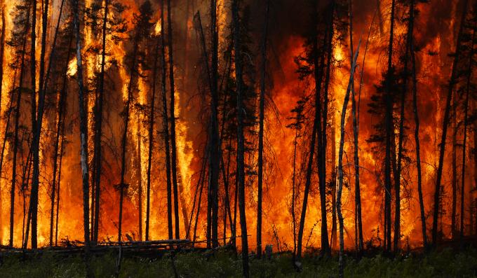 Zdjęcie: pożar lasu w Kanadzie. Widać czarne kikuty drzew, podświetlone pomarańczowym ogniem.