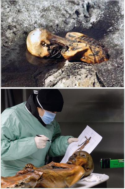 Zdjęcia: pozostałości wędrowca wmarzniętego w lodowiec – fragment mumii wystającej z lodu, mumia w laboratorium, opisywana przez naukowca.