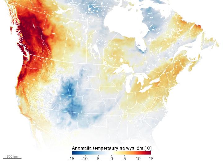 Mapa: Anomalia temperatury w Ameryce, widoczny duży obszar anomalnie wysokich temperatur w Waszyngtonie, Oregonie i Kolumbii Brytyjskiej.